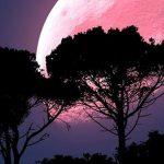 ¿Cómo calcular signo solar lunar y ascendente?