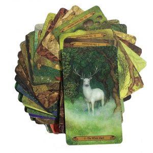 Detalle de la baraja The Forest of Enchantment